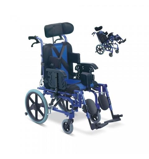 Carucior cu rotile, multipozabil, actionare manuala - FS958LBCGPY