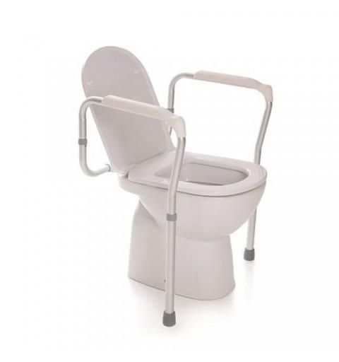Cadru WC cu doua picioare - RP770